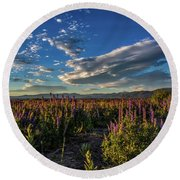 Round Beach Towel featuring the photograph Lenticular Lupine by Mitch Shindelbower