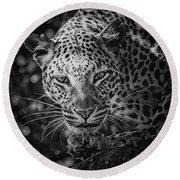 Leopard, Black And White Round Beach Towel