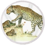 Leopard Family Round Beach Towel