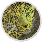Leopard Gaze Round Beach Towel