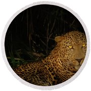 Leopard Hiding Round Beach Towel