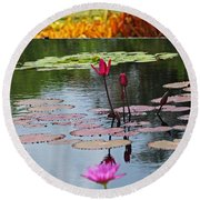 Round Beach Towel featuring the photograph Let The Music Lift You by Michiale Schneider