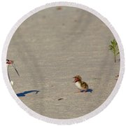Lets Eat  Round Beach Towel