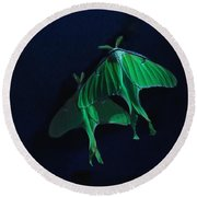 Round Beach Towel featuring the photograph Let's Swim To The Moon by Susan Capuano