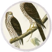 Levant Sparrow Hawk Round Beach Towel by English School