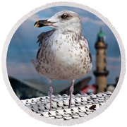 Liberty Of An Pacific Gull Round Beach Towel