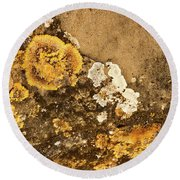 Round Beach Towel featuring the photograph Lichen On The Piran Walls by Stuart Litoff