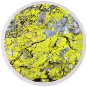 Round Beach Towel featuring the photograph Lichen Pattern by Christina Rollo