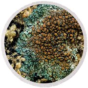 Round Beach Towel featuring the photograph Lichen Pattern by Jean Noren