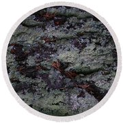 Round Beach Towel featuring the photograph Lichen Texture by Nareeta Martin