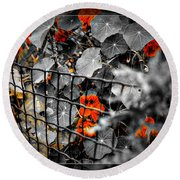 Life Behind The Wire Round Beach Towel