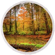 Round Beach Towel featuring the photograph Life Cycle by Dmytro Korol