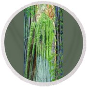 Life In A Redwood Forest Round Beach Towel