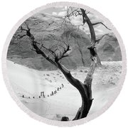 Round Beach Towel featuring the photograph Life In The Desert -  Arizona by Mike McGlothlen