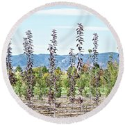 Life On A Tree Farm-foothills View #1 Round Beach Towel