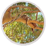 Life's Hard, Yanchep National Park Round Beach Towel