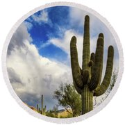 Round Beach Towel featuring the photograph Light And Shadow by Rick Furmanek