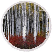Light In Forest Round Beach Towel by Leland D Howard