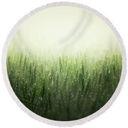 Light Storm Round Beach Towel by Peter Scott