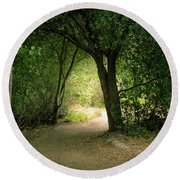 Light Through The Tree Tunnel Round Beach Towel