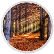 Light Thru The Trees Round Beach Towel by Sumoflam Photography
