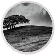 Like A Fool Round Beach Towel by Mark Alder