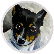 Lil Rat Terrier Round Beach Towel by Jeanette Jarmon