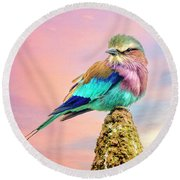 Lilac Breasted Roller At Sunset Round Beach Towel
