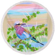 Lilac Breasted Roller In Thorn Tree Round Beach Towel by Phyllis Kaltenbach