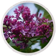 Lilac Buds Round Beach Towel