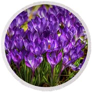 Lilac Crocus #g2 Round Beach Towel