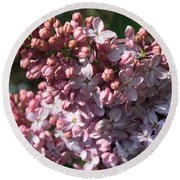 Round Beach Towel featuring the photograph Lilac by Mary-Lee Sanders