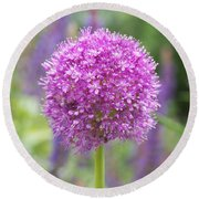Lilac-pink Allium Round Beach Towel