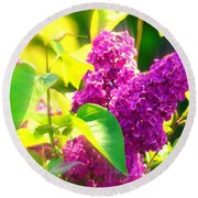 Round Beach Towel featuring the photograph Lilacs by Susanne Van Hulst