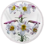 Lilium Regale Round Beach Towel