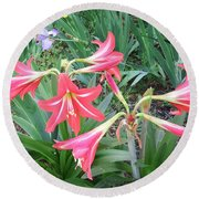 Lillies Round Beach Towel by Cathy Harper