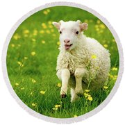 Lilly The Lamb Round Beach Towel