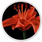 Lily 11018-1 Round Beach Towel