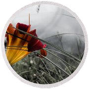 Lily At Dusk Round Beach Towel