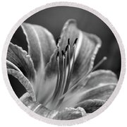 Round Beach Towel featuring the photograph Lily In Black And White by Chrystal Mimbs
