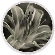 Round Beach Towel featuring the photograph Lily In Sepia by Chrystal Mimbs