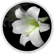 Lily In The Light Round Beach Towel