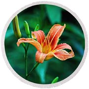 Lily In Woods Round Beach Towel
