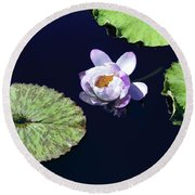 Round Beach Towel featuring the photograph Lily Love II by Suzanne Gaff