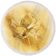 Round Beach Towel featuring the digital art Lily My Lovely - S114sqc75v2 by Variance Collections