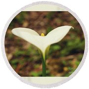 Lily Of The Valley Round Beach Towel by Cassandra Buckley