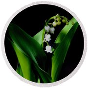 Lily Of The Valley Round Beach Towel by Living Color Photography Lorraine Lynch
