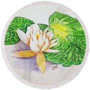 Round Beach Towel featuring the drawing Lily Pad by J R Seymour