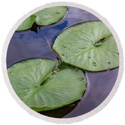 Lily Pad Reflections Round Beach Towel