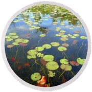 Lily Pads And Reflections Round Beach Towel